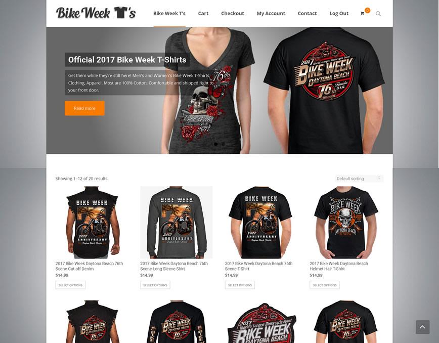 web design portfolio recent example